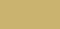 לוגו לקוסמטיקאית בעיצוב אישי ומיוחד